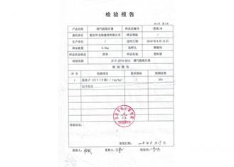 氯离子检测报告